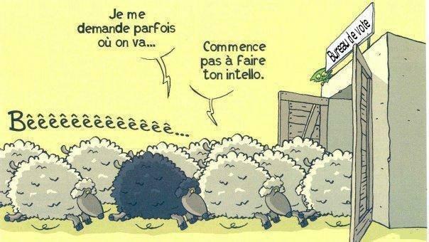 Commence pas à faire ton intello-moutonauxurnes