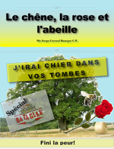 Cover-06 - copie